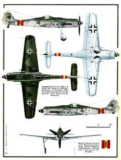 Fw190D & Ta152