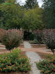 X marks the spot where the gravel and brick pathways meet. Colonial Williamsburg.