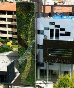 Ecosistema vertical en la Confederación de Empresarios Privados de Cochabamba…