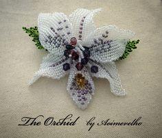 The Orchid by aoimevelho
