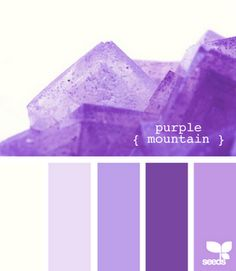 The three shades of Purple in the center. Great-grand children - deep purple, Grandchildren - Purple and children Light purple. Colors to wear for party. Colour Pallette, Colour Schemes, Color Patterns, Color Combos, Purple Hues, Shades Of Purple, Purple Palette, Light Purple, Deep Purple