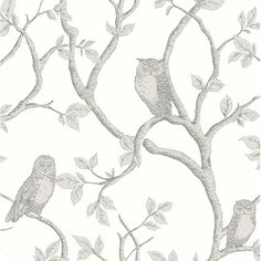 Whether you're decorating a nursery or a living room, this sweet owl wallpaper will add a sophisticated touch of whimsy. Wise barn owls and serene snowy owls perch on their branches, while the trees grow up the wall.