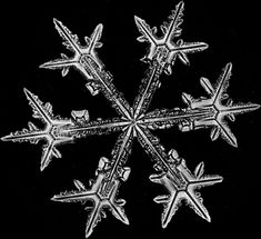 The first substantial collection of snow crystal photographs was created by Wilson Bentley (1865-1931)