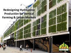 Redesigning Hydroponic Production for Vertical Farming & Urban Markets