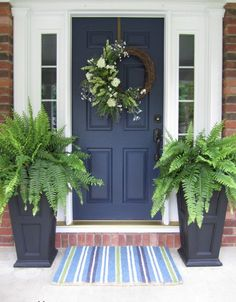 Color for our front door..