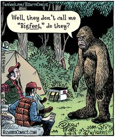 Plan a BigFoot party with all of these fun Big Foot games! Hunt for Big foot and have some fun with friends while you serach for this mythical creature. Bizarro Comic, Funny Cartoons, Funny Comics, Bigfoot Party, Bigfoot Photos, Finding Bigfoot, Grammar Humor, Biology Humor, Chemistry Jokes