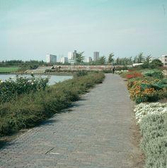 1967. Gezicht in het Park Transwijk te Utrecht.