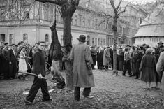 Lynch mob justice on Budapest's Köztarsasag Square outside the Party headquarters on October The remains are those of Jozsef PAPP, First Lieutenant. Eugene Richards, Robert Frank, Robert Doisneau, Political Events, Magnum Photos, Budapest Hungary, Old Art, Historical Photos, Warfare