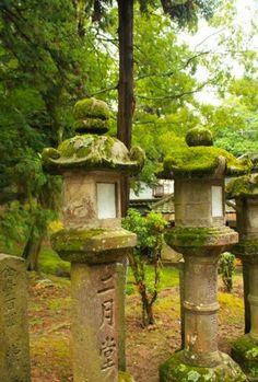 .nara.kyoto. I saw these last year in Nara