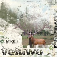 "VELUWE: A male deer on a daytrip in the nature reserve ""de Veluwe"".  I made this page with ART AND The Woods from Jen Maddocks, available at Digital Scrapbooking Studio here: http://www.digitalscrapbookingstudio.com/jen-maddocks-designs/"