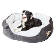 Transer Warm Double-Cushion Dog Puppy Bed Soft Fleece Dog House Pet Bed for Dog and Cat Dog Kennel Drop shipping 90611 Pet Dogs, Dogs And Puppies, Dog Cat, Pets, Canis, Round Dog Bed, Puppy Beds, Dog Beds, Puppy Supplies