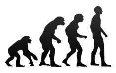 44 Reasons Why Evolution Is Just A Fairy Tale For Adults - Freedom Outpost