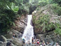El Yunque National Forest in Río Grande, Río Grande Municipio  precio y horas: N/A