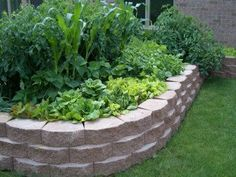 Raised Garden Border Ideas furniture exterior outstanding brown solid wood borders raised garden beds attached on the fence garden design Landscape Edging Design Ideas The Benefits Of Raised Garden Beds