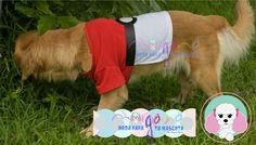 Mascota: Ámbar Talla: 6 Estampado y color: Pokébola (blanco con rojo).  Fotografía: Tatiana Rodriguez Diseño: América García
