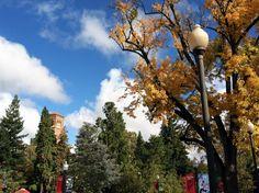 CSU Chico campus, fall 2013.