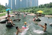 Yangjae Stream