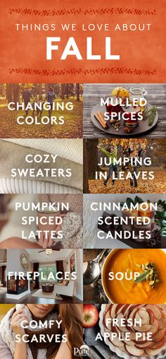 So excited to bring the spirit of fall into home decor, recipes, and more! | Pulte Homes
