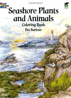 Seashore Plants and Animals Coloring Book (Dover Nature Coloring Book) by Dot Barlowe, http://www.amazon.com/dp/0486410331/ref=cm_sw_r_pi_dp_LT9Wqb1EREW11