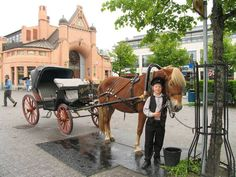 Boy and a Horse cart in front of Kuopio Market Hall.