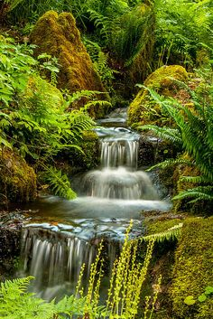 Minter Garden ~ Chilliwack, Canada- A waterfall can be so peaceful and calming. May we take the time to focus on the beauty of the world and not dwell on the problems of the world. May we stay positive in all we do.