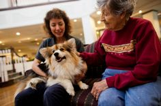 a therapy pet dog visits with a resident at an assisted living facility