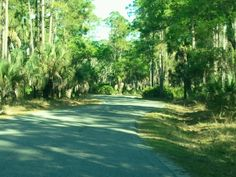 Lake Kissimmee State Park in Lake Wales, FL