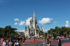 Tips for a Wonderful Trip in Orlando Theme Parks