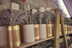 dusty miller plant favors in little tin can planters