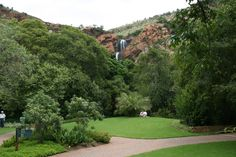 Walter Sisulu National Botanical Gardens National Botanical Gardens, Child Friendly, Places Ive Been, Golf Courses, Things To Do, Sidewalk, Things To Make, Sidewalks, Todo List