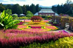 Colorful fall Walled Garden at Biltmore House in Asheville