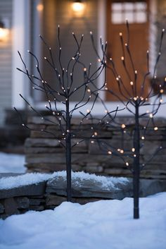 LED Branches: LED Winter Sapling - Battery Operated with Timer