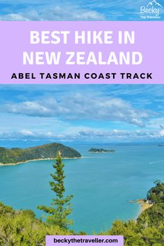 Need Help Planning Your Next Camping Trip? Brisbane, Melbourne, Sydney, New Zealand Adventure, New Zealand Travel, Abel Tasman National Park, Hiking Guide, Adventure Activities, Turquoise Water