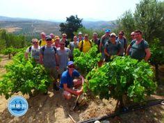 Goedkoop vliegen naar Kreta Griekenland excursies en vluchten naar Kreta Goedkoop op vakantie Kreta laatste vakantienieuws uit Kreta
