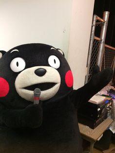 くまモン【公式】(@55_kumamon)さん | Twitter pic.twitter.com/PWvO1zqP1C