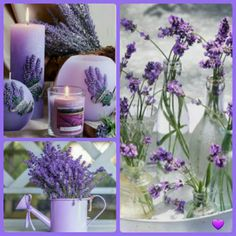Lavender And Lemon, Lavender Green, Lavender Fields, Lavender Flowers, Love Flowers, My Flower, Shades Of Violet, Color Collage, Beautiful Collage