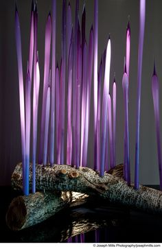 Dale Chihuly (American, b. 1941)  Reeds, 2002 Glass  Oklahoma City Museum of Art. Museum Purchase, 2004