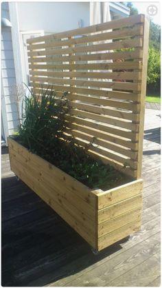 ideas for backyard fence landscaping privacy planter boxes Patio Trellis, Patio Pergola, Pergola Design, Backyard Patio, Backyard Landscaping, Patio Fence, Pergola Kits, Backyard Ideas, Backyard Planters