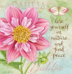 """Dahlia -♥- """"Lose yourself in nature and find peace"""""""