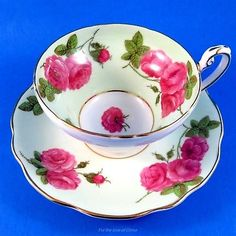 Pretty Pink Century Rose on Light Green Border Foley Tea Cup and Saucer Set