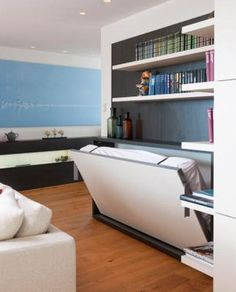 """With the downsizing of so many living spaces, I'm surprised more retailers are not stocking """"Murphy Beds"""" (wall beds)."""