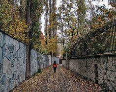 Middle of my way به کجا گریزم ای دل که درین قفس اسیرم به جوانیم چه کردم که کنون کنم که پیرم  یکشنبه ی آبانیتون پر مهر و باران #persia #autumn #iran #tehran #autumncolors #autumnleaves #autumnisallaboutyellowandorange  #semiramis_in_frame