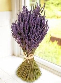 lavender centerpiece--could be cheap and matches the color scheme!