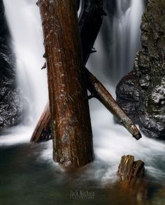 """""""X Falls""""  A cool waterfall on the way to Lake 22. I love how random logs get stuck in waterfalls around here creating such interesting small scenes!  #nature #hike #hiking #lake22 #snocotourism #snohomishcounty @snohomishcountytourism #wa #washington #pnw #pnwcollective #pacificnw #northwestisbest #pacificnorthwest #falls #waterfall #longexpo #amazing_longexpo #longexposure #cascades #forest #water #river #creek"""
