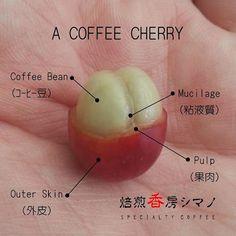 #coffee                                                       …