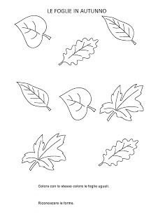 La maestra Linda: Autunno Leaf Coloring Page, Coloring Pages, Floral Illustrations, Patches, Fine Art, Education, Drawings, Fall, Image