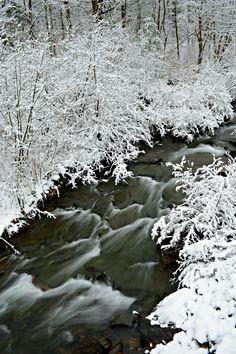 Snowy Mountain Run