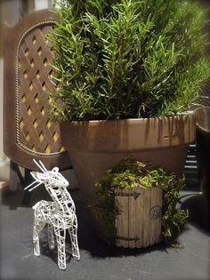 puerta caprichosa elfo, artesanías, flores, jardinería, vida, al aire libre, de la ONU: Añadir ornamento De Césped si te gusta