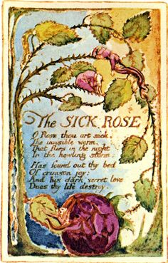 william blake poems - Google Search O Rose thou art sick The invisible worm That flies in the night In the howling storm  Has found out thy bed Of crimson joy And his dark secret love Does thy life destroy.  William Blake