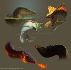 "thelittledragonheartthings: "" 5 Random dragon heads by Black-Wing24 """